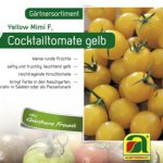 Cocktailtomate gelb Yellow Mimi